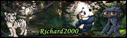 _richard2000_-banner.jpg